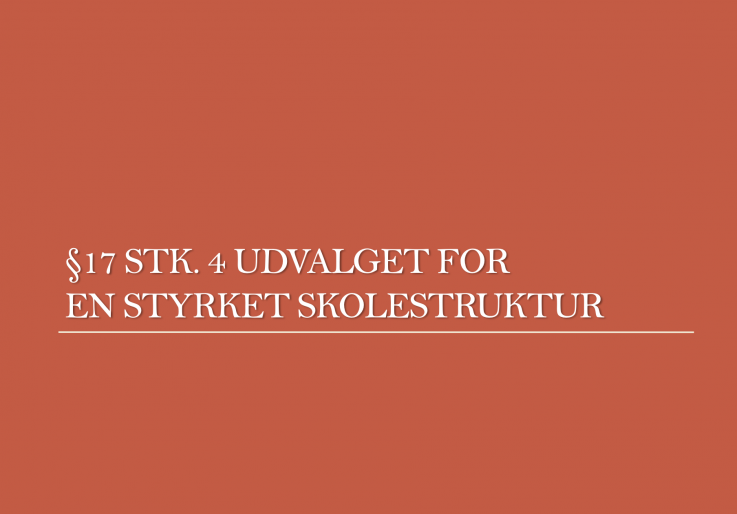 Strukturudvalg 17 4